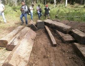 Phát hiện số gỗ lớn cất giấu trong Vườn quốc gia Yok Đôn