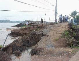 Xác định 4 nguyên nhân gây sạt lở bờ kè sông Cần Thơ