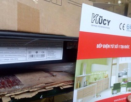 """""""Phù phép"""" bếp điện từ Trung Quốc thành hàng Đức, Ý, Malaysia"""