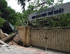 Hà Nội rà soát các trường học thiệt hại trong cơn giông lớn