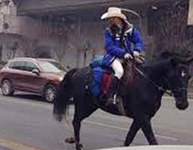 Không mua được vé tàu, cưỡi ngựa về quê ăn Tết