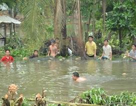 Người Sài Gòn đánh bắt cá... giữa phố phường