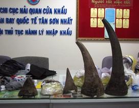 Phát hiện hơn 13kg sừng tê giác Châu Phi nhập lậu vào Việt Nam