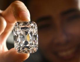 Choáng với viên kim cương giá 450 tỷ đồng