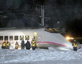 Bão tuyết tấn công Nhật Bản làm 8 người chết