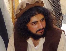 Mỹ bắt sống lãnh đạo lực lượng Taliban tại Pakistan