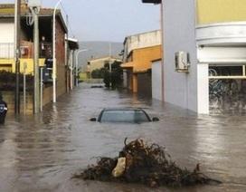 Ít nhất 14 người thiệt mạng vì bão lớn tại Ý