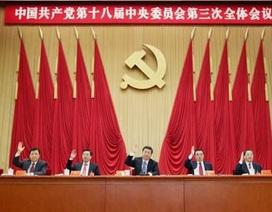 """Trung Quốc cải cách để """"thị trường giữ vai trò quyết định"""""""