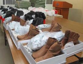 Đài Loan bắt giữ 200 kg ma túy ketamine từ Trung Quốc