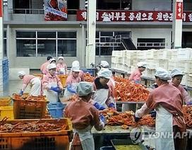 Triều Tiên giữ nguyên chính sách kinh tế sau khi xử tử ông Jang Song-thaek