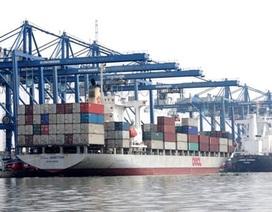 Cách chức lãnh đạo cảng biển nếu xếp container quá tải trọng