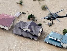 Danh tính thuyền viên Việt Nam mất tích trong siêu bão Hagibis