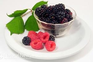 7 loại thực phẩm có nguồn gốc thực vật giúp tiêu diệt tế bào ung thư