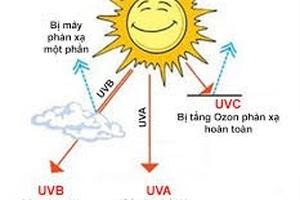 Viên chống nắng: Quảng cáo cao siêu, tác dụng không nhiều! - 2
