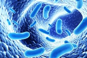 Lợi khuẩn Bifido giúp người bệnh hạn chế tình trạng tái đi tái lại