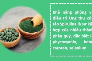 Những tác dụng ngạc nhiên của vi tảo Spirulina trong phòng và điều trị ung thư - 2