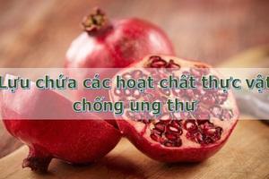 """Loại quả ưa thích của người Việt được coi là """"siêu thực phẩm"""" chống ung thư hàng đầu - 2"""