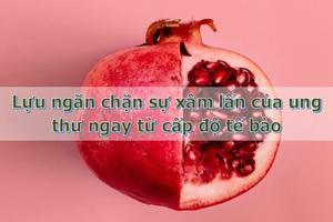 """Loại quả ưa thích của người Việt được coi là """"siêu thực phẩm"""" chống ung thư hàng đầu - 3"""
