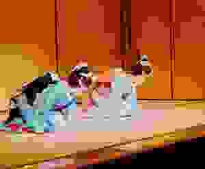 Ojigi: Nghệ thuật cúi chào của người Nhật Bản