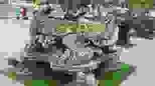 """""""Báu vật"""" nhà Phật, lần đầu xuất hiện khiến giới chơi cây choáng ngợp"""