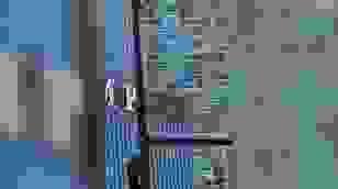 Treo mình lơ lửng trên Tháp Trump để được nói chuyện với Tổng thống Mỹ
