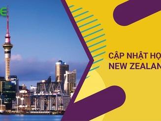 Cập nhật danh sách học bổng du học New Zealand năm 2020