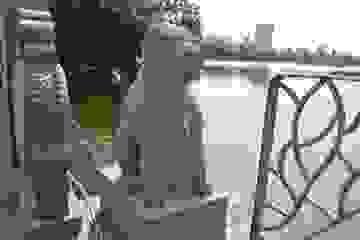 """Bí ẩn về ngôi đền thờ """"thần chó"""" giữa trung tâm Hà Nội"""