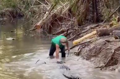 Cá sấu hoang dã nhào lên định đớp, người đàn ông dùng tay ấn đầu, đuổi đi
