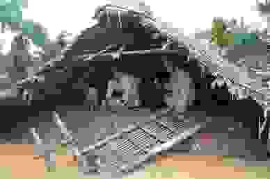Nhiều trường đại học lên phương án hỗ trợ đồng bào miền Trung lũ lụt