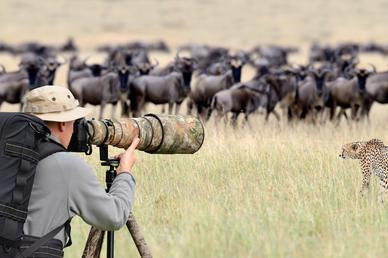 Các nhà làm phim giữ an toàn thế nào khi ghi hình động vật hoang dã? (P2)