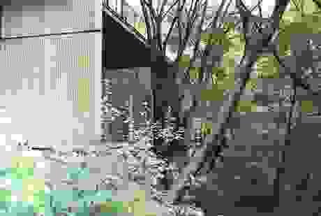 Tìm tới khách sạn an yên giữa rừng ở vùng đất chữa lành Komatsu