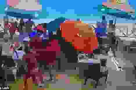 Video: Mô tô nước mất kiểm soát gây tai nạn trên bờ biển