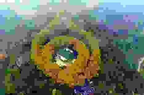 Cung điện hình viên ngọc khổng lồ biểu tượng tình yêu ở Trung Quốc