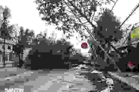 Quảng Ngãi: Nhà dân tan hoang sau bão số 9