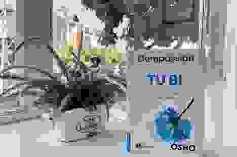 Từ thiện và khái niệm về lòng tốt của Osho