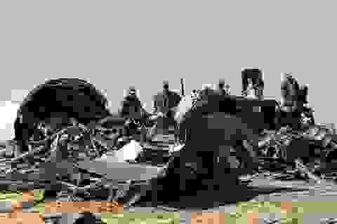Nga treo thưởng 50 triệu USD bắt nghi phạm đánh bom máy bay