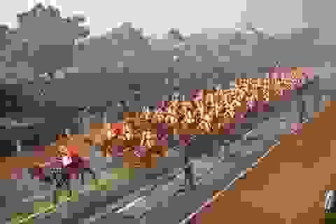 Hình ảnh lạ mắt trong lễ mừng ngày Cộng hòa Ấn Độ