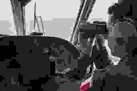 Phát hiện tín hiệu nghi từ hộp đen máy bay Ai Cập mất tích