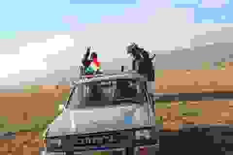 Lãnh thổ IS chiếm đóng giảm 30% trong năm 2015