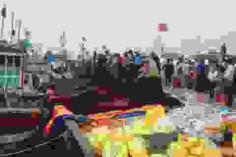 Lộc biển ùa về tấp nập cầu cảng Lý Sơn
