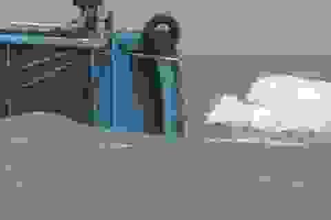 Tàu Trung Quốc tông chìm tàu cá Quảng Ngãi ở Hoàng Sa