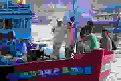 Tàu cá bị tông chìm ở Hoàng Sa: Yêu cầu Trung Quốc bồi thường