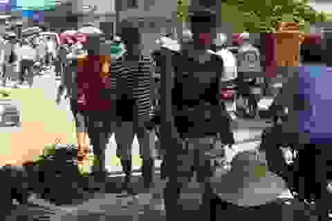 Công bố tổng đài hỗ trợ du lịch trên đảo Lý Sơn