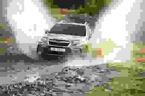 Subaru Forester 2016 - Xoá bỏ những giới hạn