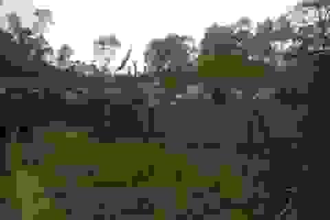 Vụ 4 công an bị hành hung: Dân đập phá, ném gạch vào nhà cán bộ xã