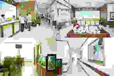 Thành công của y tế tư nhân: Nhìn từ hệ thống phòng khám Vietlife