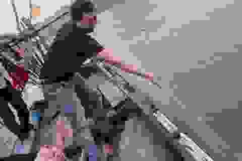 Xem du khách... đuổi bắt cá giữa Vịnh Hạ Long