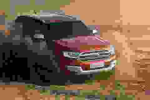 Ford Everest mới có giá bán, Peugeot 208 ra phiên bản mới