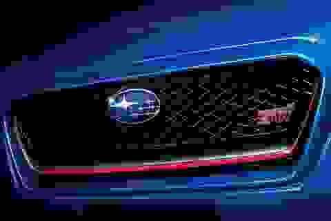 """Subaru ra mắt phiên bản giới hạn của """"xe đua đường phố"""" WRX STI"""