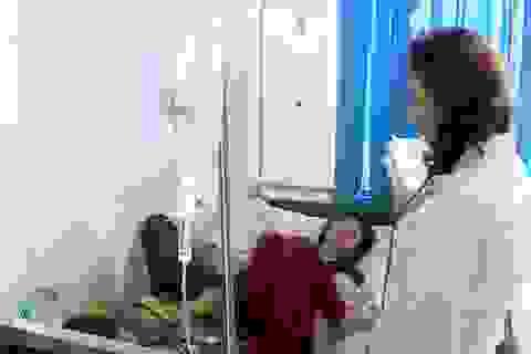 Lâm Đồng: Ghi nhận ca tử vong đầu tiên do sốt xuất huyết